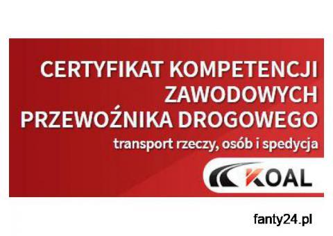 Kurs na Certyfikat Kompetencji Zawodowych Lublin Katowice Rzeszów Kalisz Kielce Konin